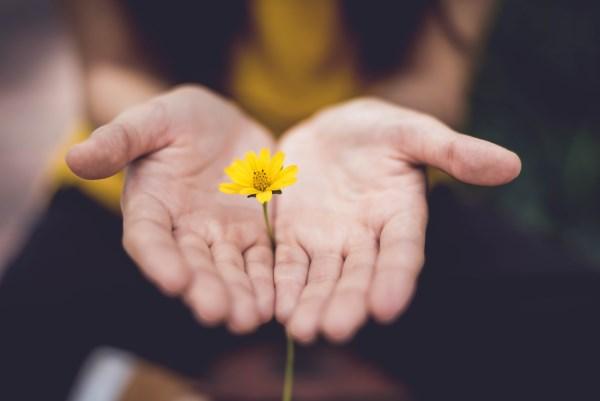 mains-fleurs-jaunes